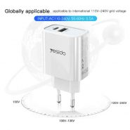 YC24 FAST WALL CHARGER