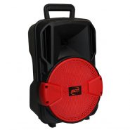 خرید اسپیکر چمدانی BD-8019